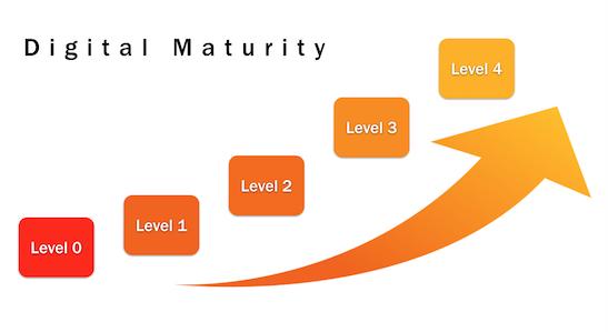curva esponenziale fasi digital maturity.png